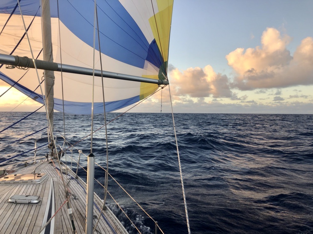 Sailing with the spinnaker